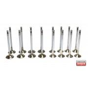 Клапани комплект 278905129001 278905129002 Tata 2.2 Dicor
